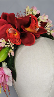 Red Tropical orchid selection with pink