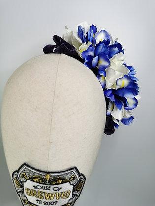 Blue and white iris with plum velvet