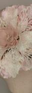 Iridescent ponsietta with blush