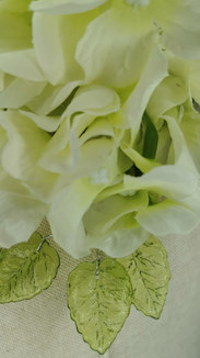 Coral Peony with white hydrangea and green translucent leaves
