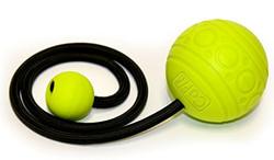Dual Massage Ball
