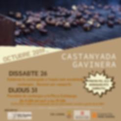 CASTANYADA GAVINERA 2019.png