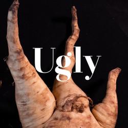 ugly_bannais