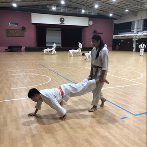 All you need to know: NUS Karate