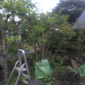 旅館お庭工事24 完了