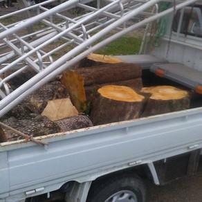 柿の伐採② 風呂作り35