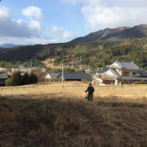 村の草刈りと選木会