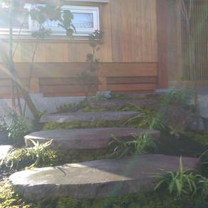 植栽の日2 もち米洗い