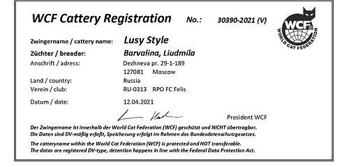 LusyStyle WCF.jpg