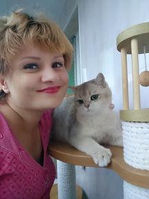 Питомник британских кошек в Москве.jpg