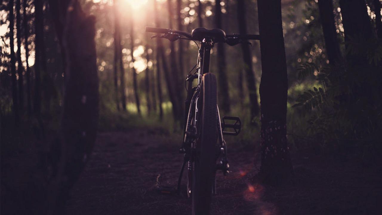 Glamping Amate Bicicleta Malinche