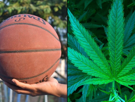 NBA Players Won't Be Tested For Marijuana Next Year As League Weighs Permanent Change