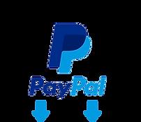 paypal arrow logo.png