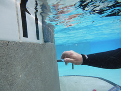 Concrete Swimming Pool leak Detection