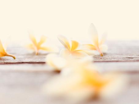 DIY: Vanilkový úklid