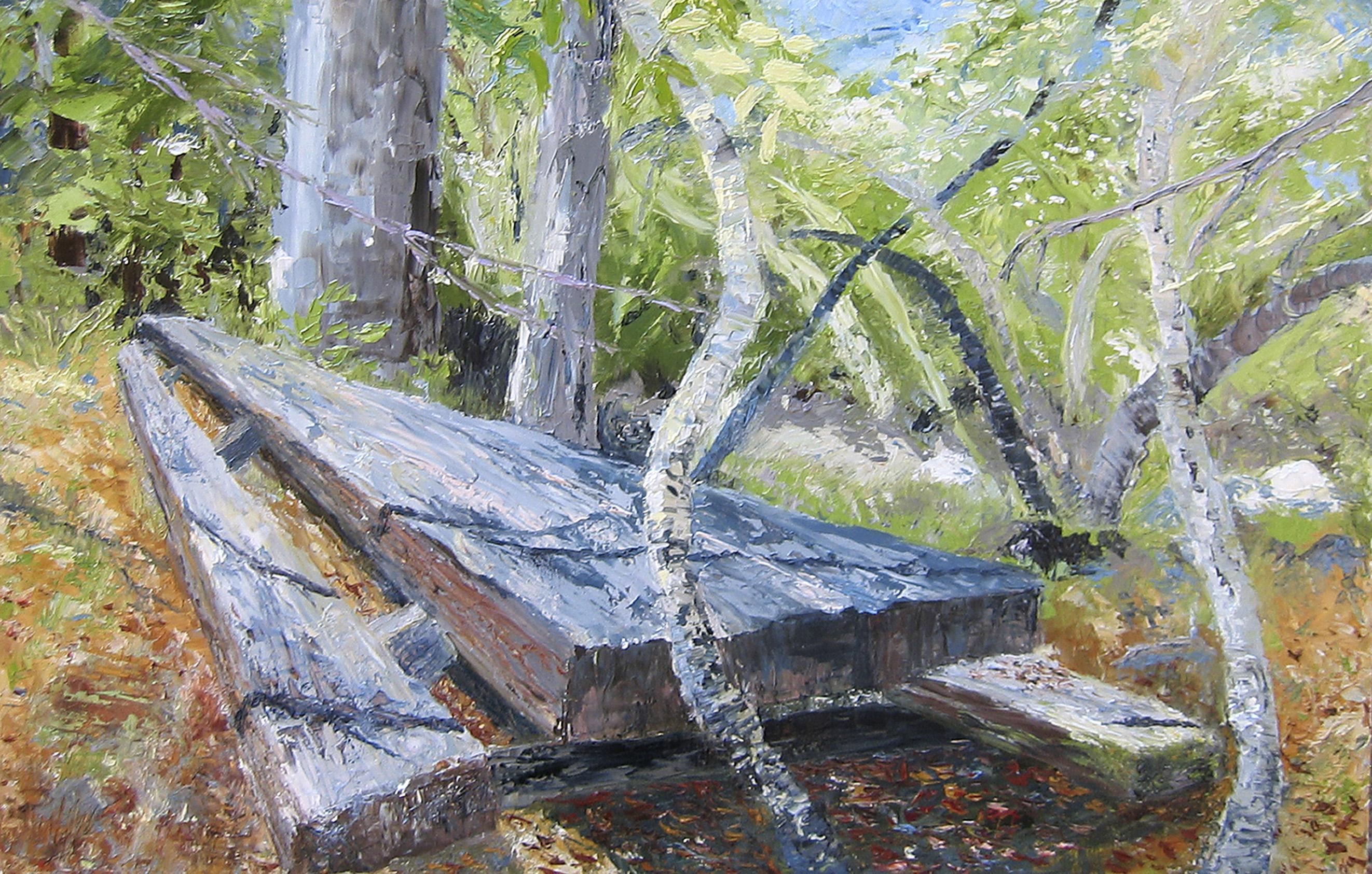 Big Creek Picnic Table