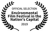 Environmental Fest DC.png