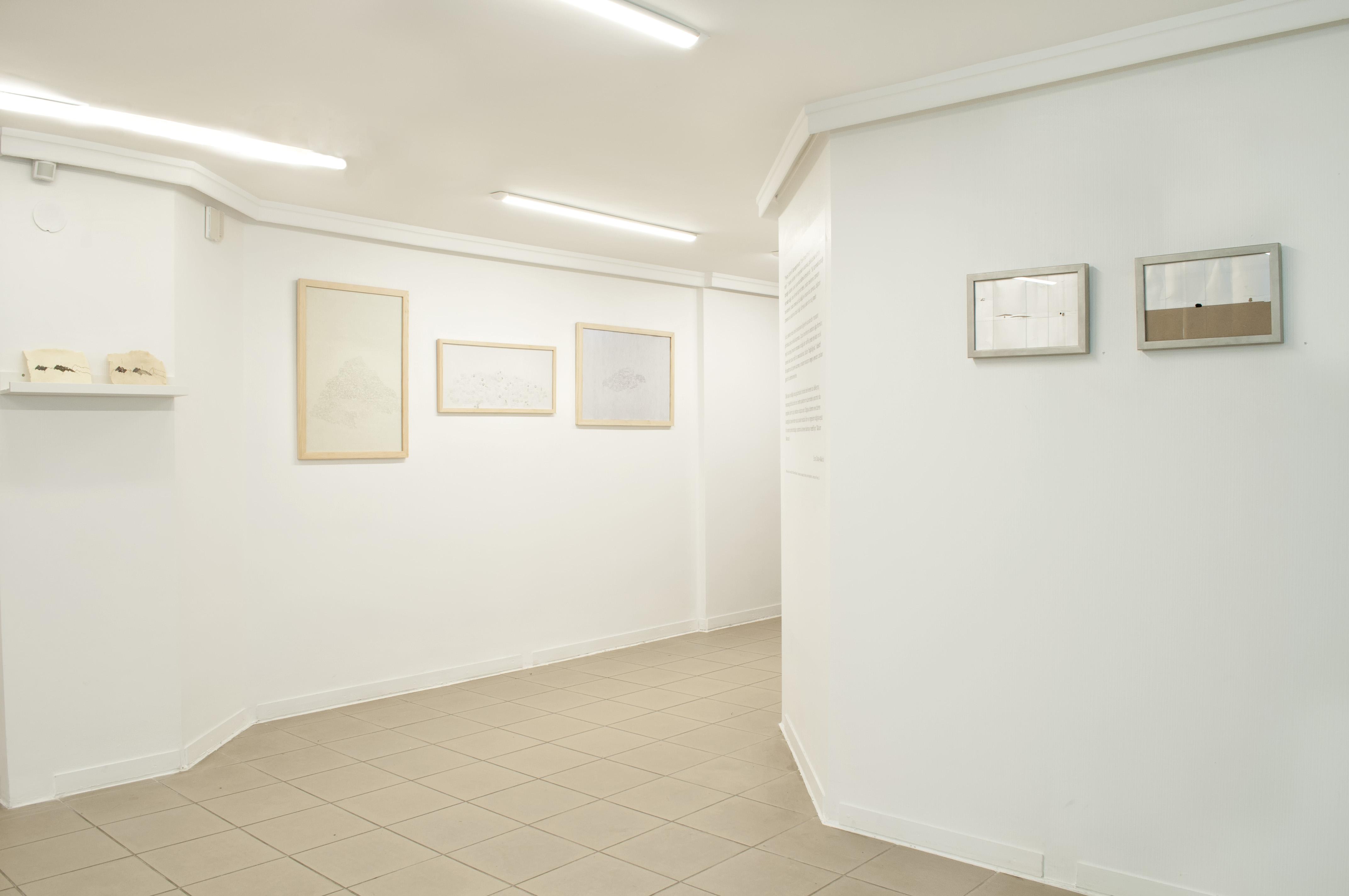 Malum Manzara. exhibition detail
