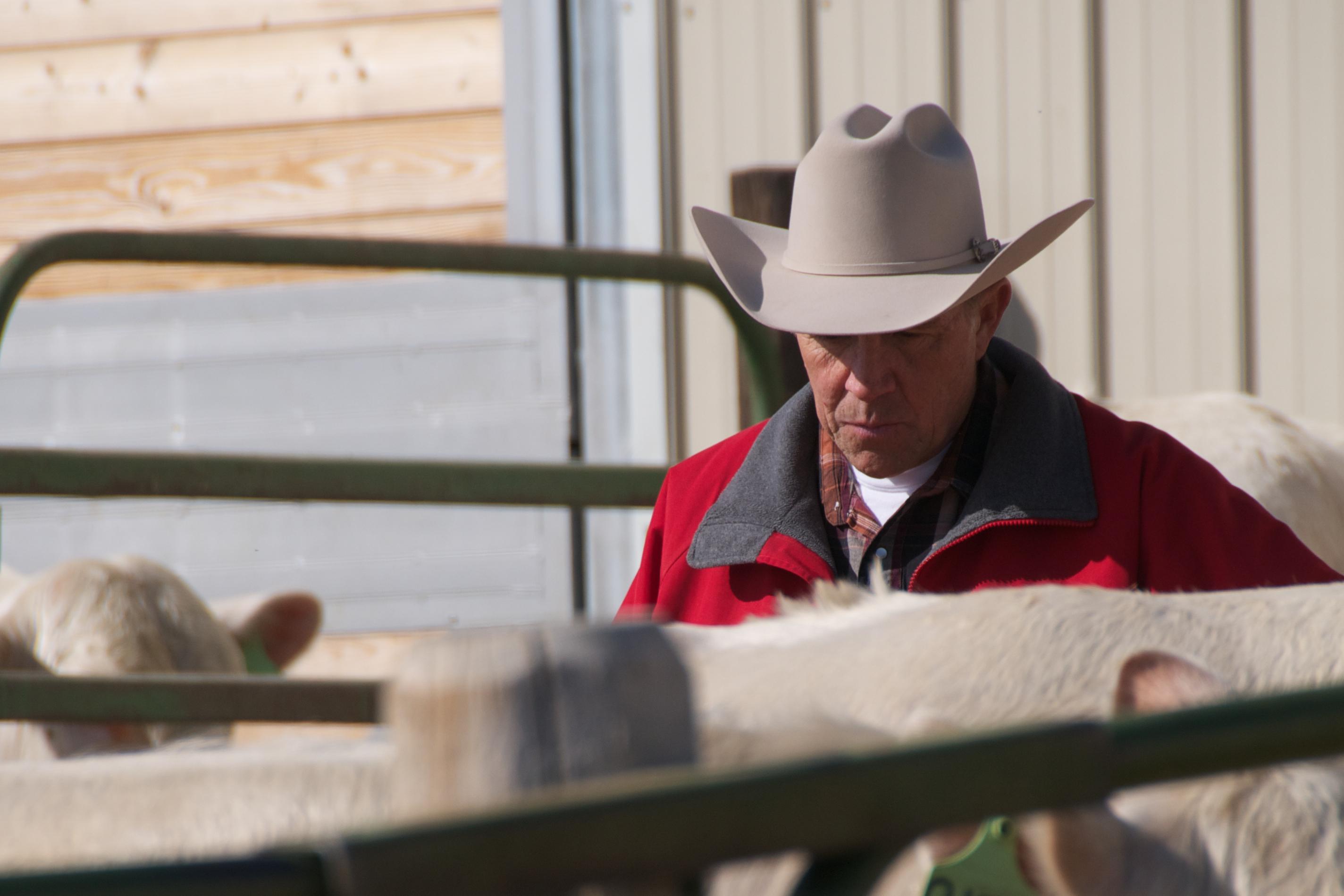 OX Ranch, Idaho