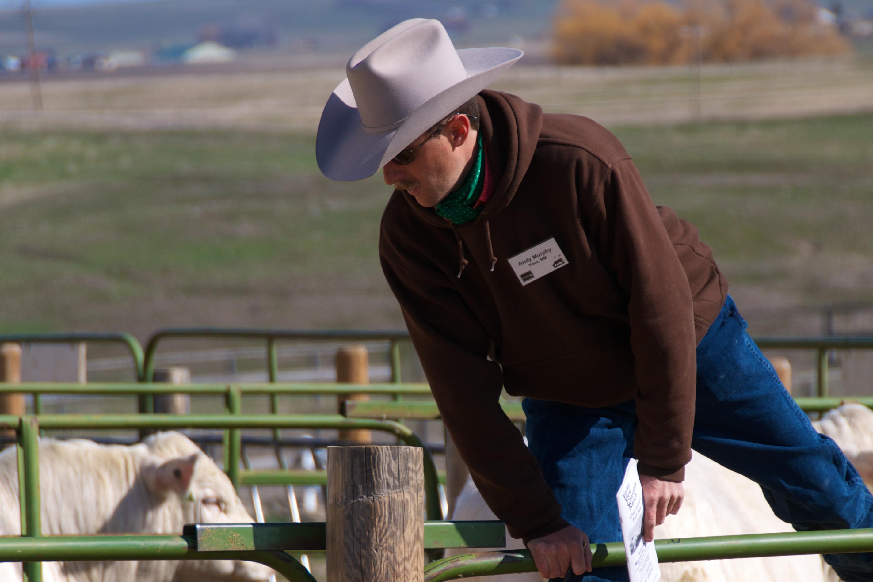 Andy Murphy, Colorado