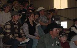 Bull Sale Crowd