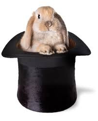 light brown bunny sitting in black top hat