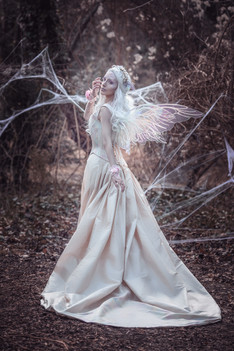 Wings by Sirenpearls