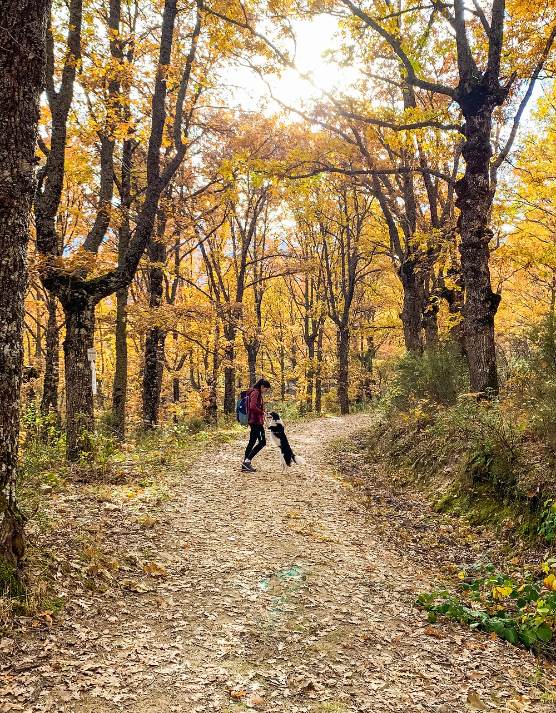Zona de La Hiruela en otoño
