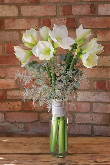 Christmas Amaryllis White Flower Bouquet
