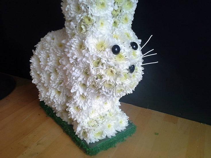 Rabbit (3D)
