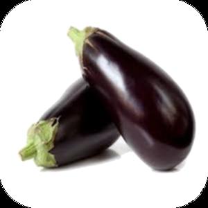 Eggplant V-110