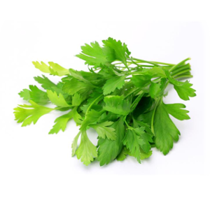Parsley H-106