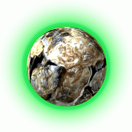 Cory Sackett - Oyster.png