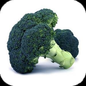 Broccoli V-123