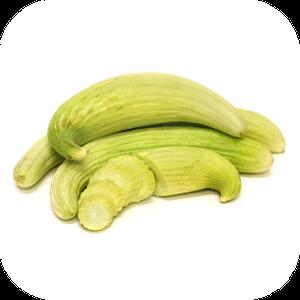 Cucumber V-121