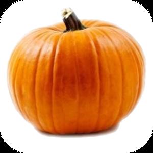Pumpkin V-128