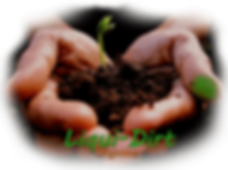 hands holding soil.png
