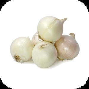 Onion V-102