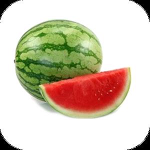 Watermelon V-122