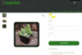 select plant name.PNG