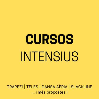 CURSOS INTENSIUS