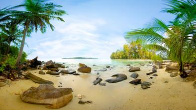 Dreamy Beach.jpg