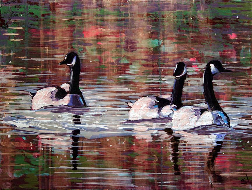 Gleam Geese