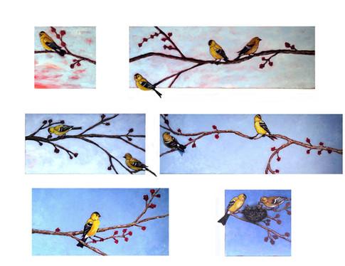 Bird Sanctuary Composite