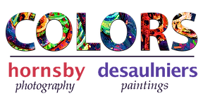 colors logo LR.png
