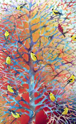 Goldfinch Bush