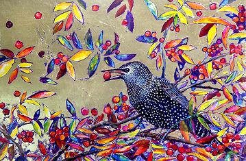 starling lr.jpg