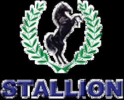 Stallion Automobiles