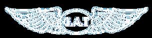 Logo GAT_weiß_transparent.png