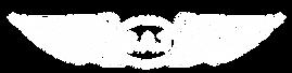 LogoGAT_wei_transparent.png